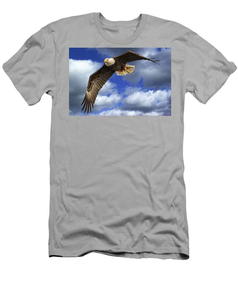 Alaska Men's T-Shirt (Athletic Fit) featuring the photograph Dinner Flight by Jack R Perry