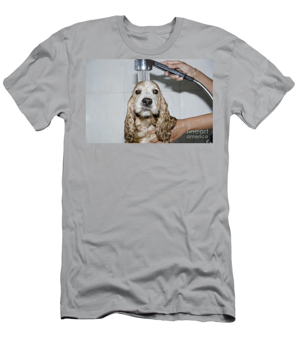 Dog Men's T-Shirt (Athletic Fit) featuring the photograph Dog Taking A Shower by Mats Silvan