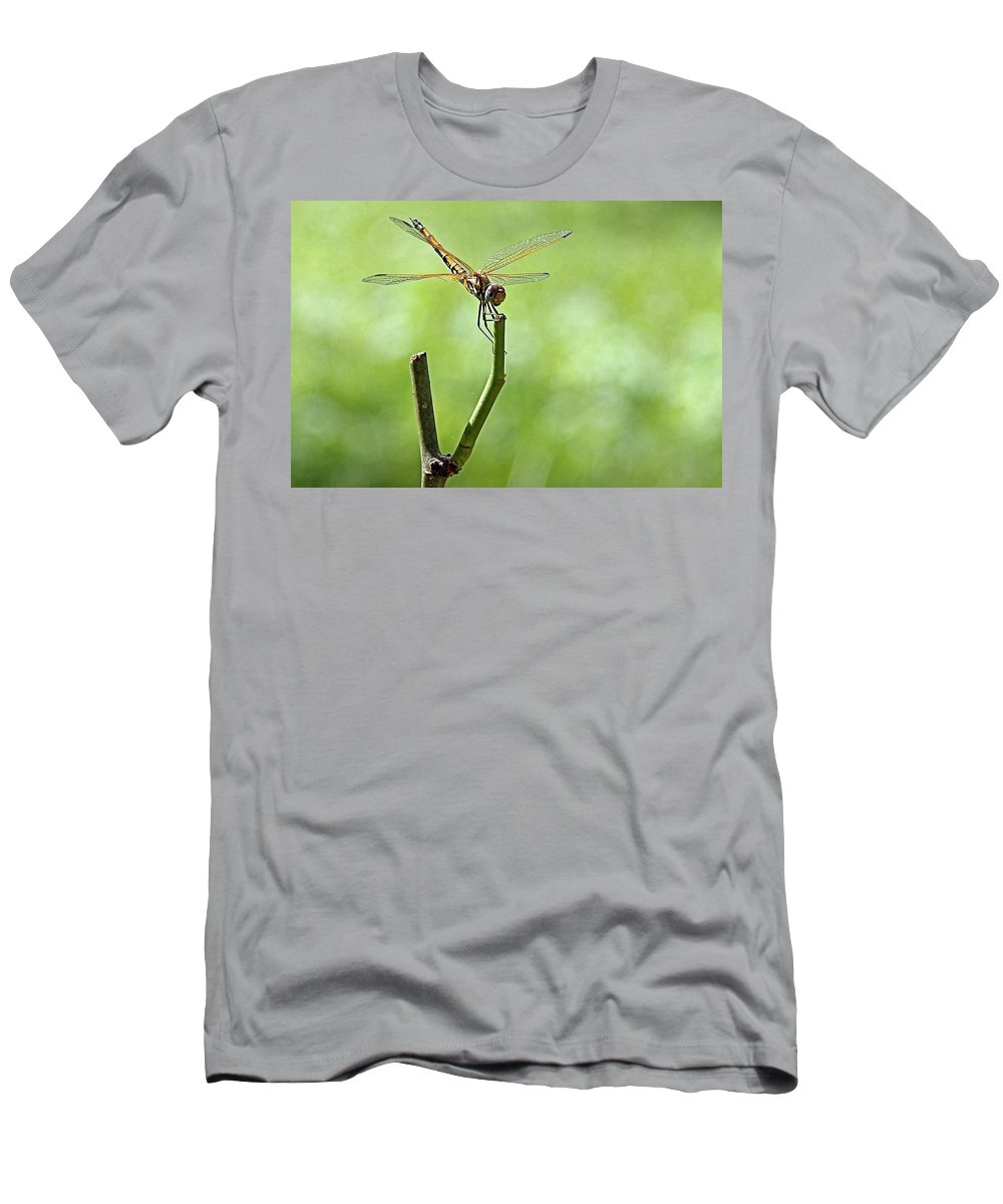 Dragon Fly Men's T-Shirt (Athletic Fit) featuring the photograph Dragon Fly by Martin Michael Pflaum