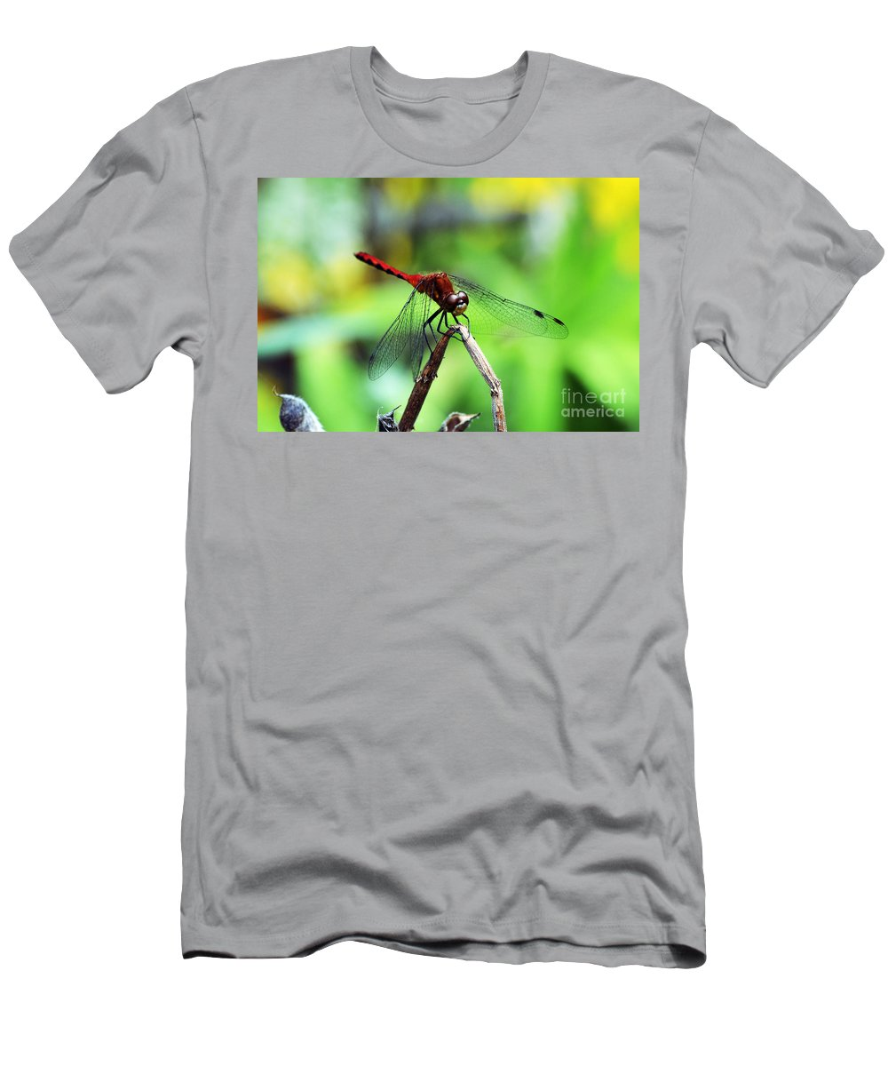 Wings Men's T-Shirt (Athletic Fit) featuring the photograph Dragonfly Hard At Work by Kevin Fortier