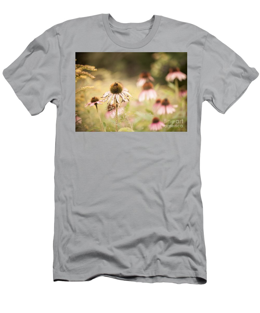 Coneflower Men's T-Shirt (Athletic Fit) featuring the photograph Dreamy Coneflowers by Mary Smyth