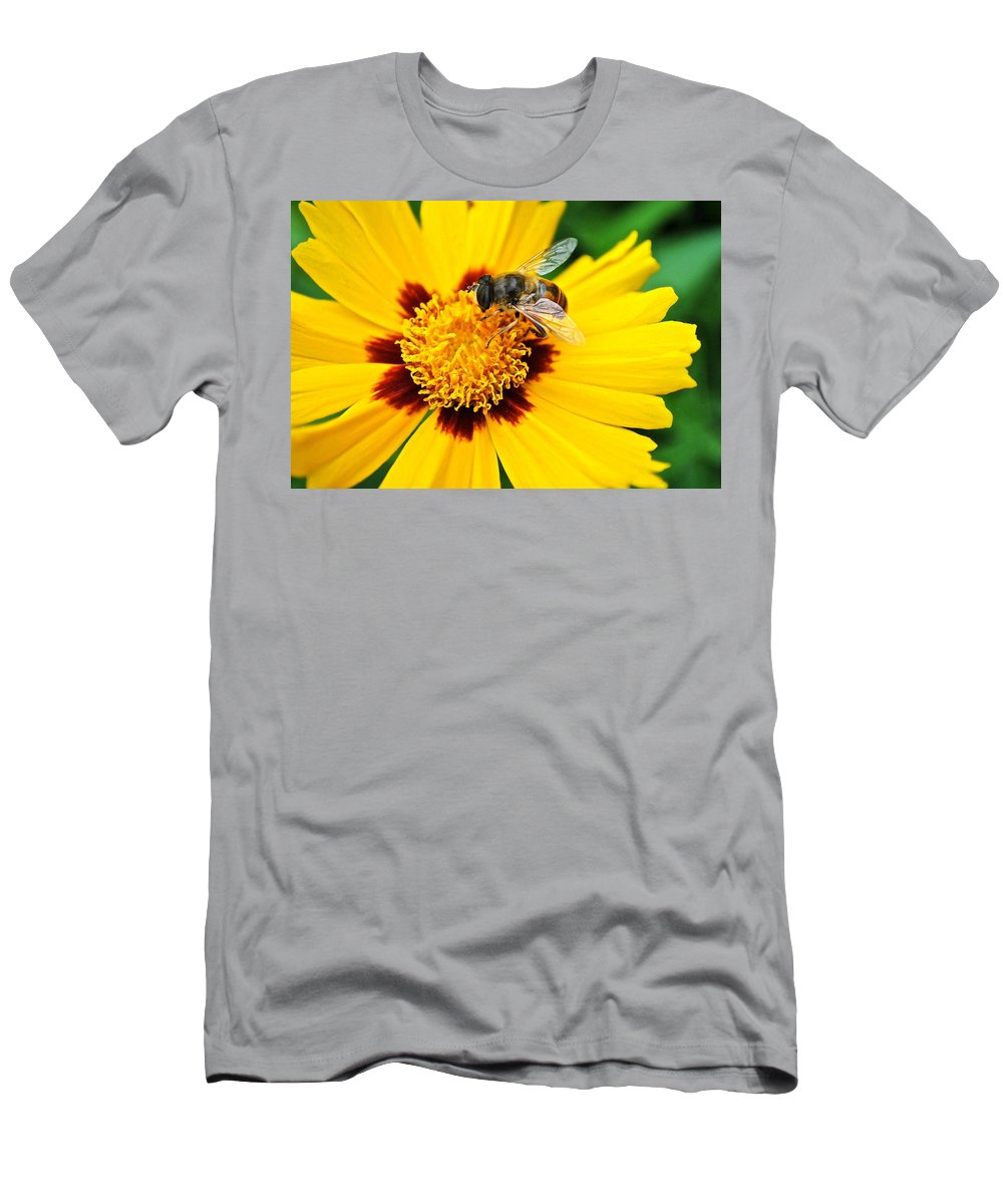 Queen Men's T-Shirt (Athletic Fit) featuring the photograph Drone Bee by Frozen in Time Fine Art Photography