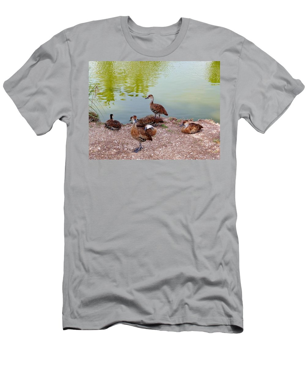 Color Men's T-Shirt (Athletic Fit) featuring the photograph Duck Pond by Amar Sheow