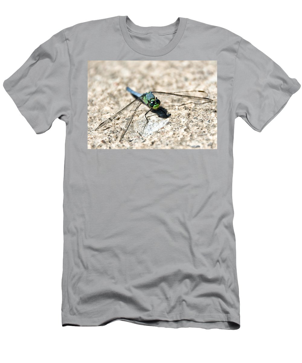 Dragonfly Men's T-Shirt (Athletic Fit) featuring the photograph Eastern Pondhawk by Cheryl Baxter