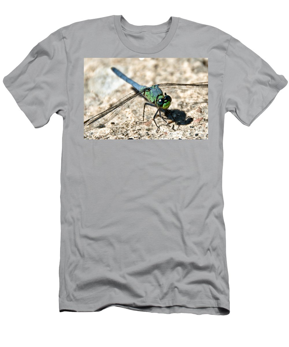 Dragonfly Men's T-Shirt (Athletic Fit) featuring the photograph Eastern Pondhawk Side by Cheryl Baxter