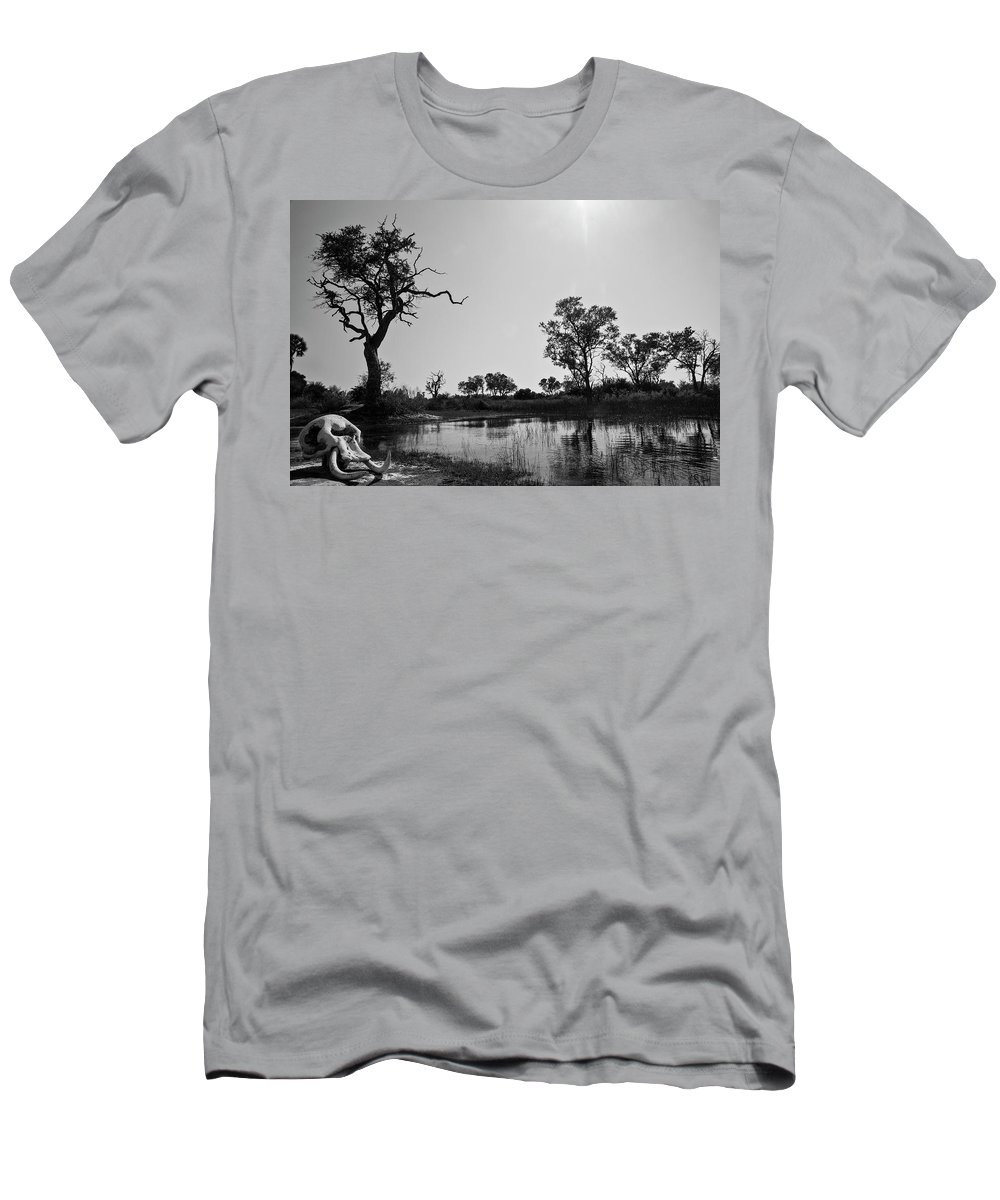 Tree Men's T-Shirt (Athletic Fit) featuring the photograph Elephant Skull On Riverbank, Okavango by Cameron MacPhail