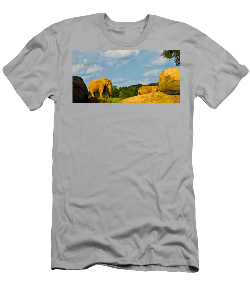 Elephants Men's T-Shirt (Athletic Fit) featuring the photograph Elephants Among The Rocks. by Jonny D