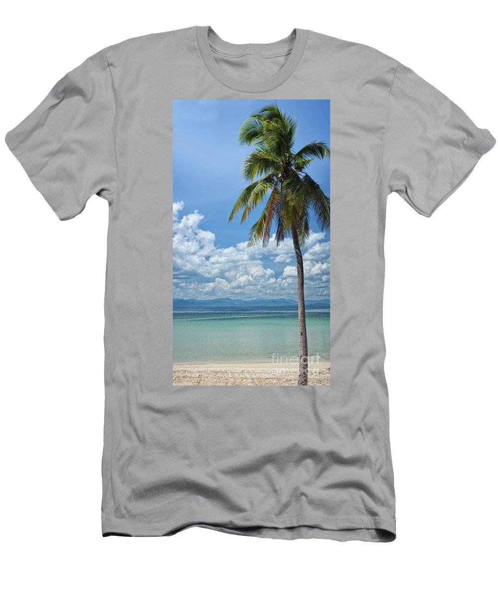 Tree Men's T-Shirt (Athletic Fit) featuring the photograph Exotic Palm Tree by Antony McAulay