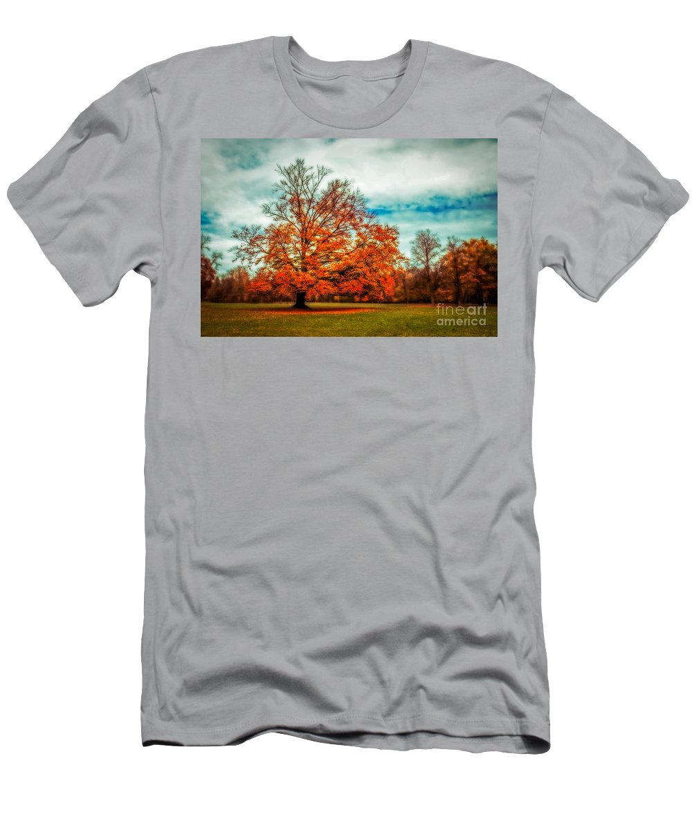 Autumn Men's T-Shirt (Athletic Fit) featuring the photograph Expecting The Winter by Hannes Cmarits