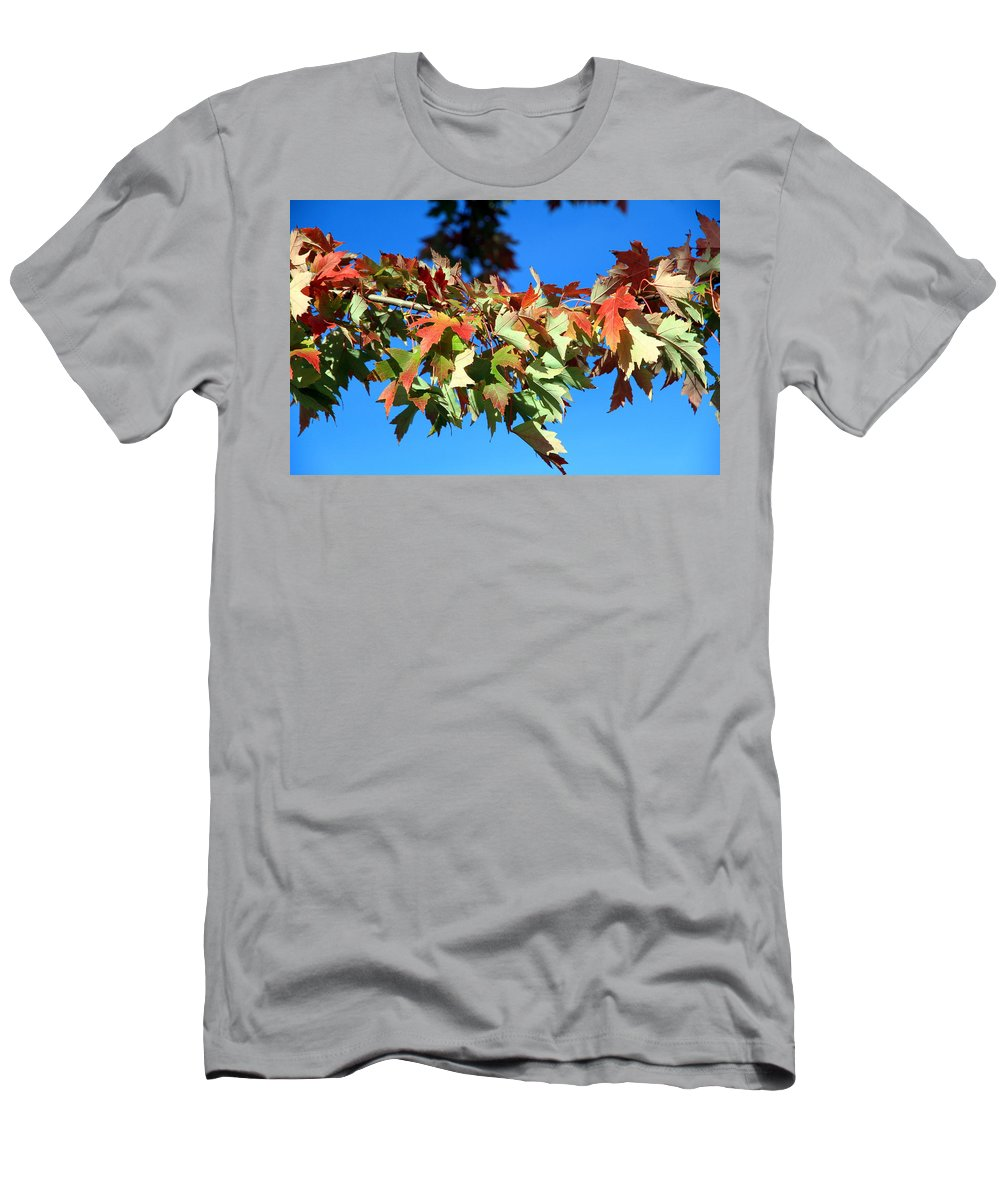 Autumn Men's T-Shirt (Athletic Fit) featuring the photograph Fall Tree by Valentino Visentini