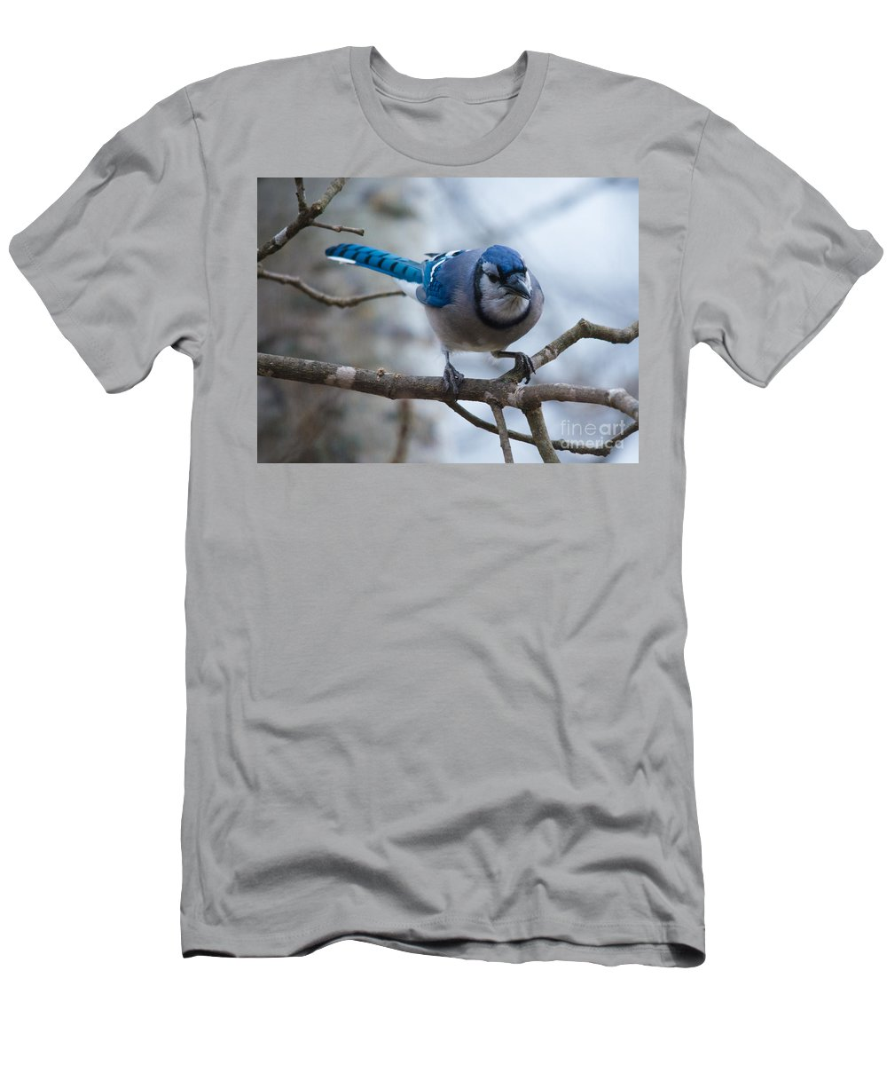 Men's T-Shirt (Athletic Fit) featuring the photograph Feeder Bound by Cheryl Baxter