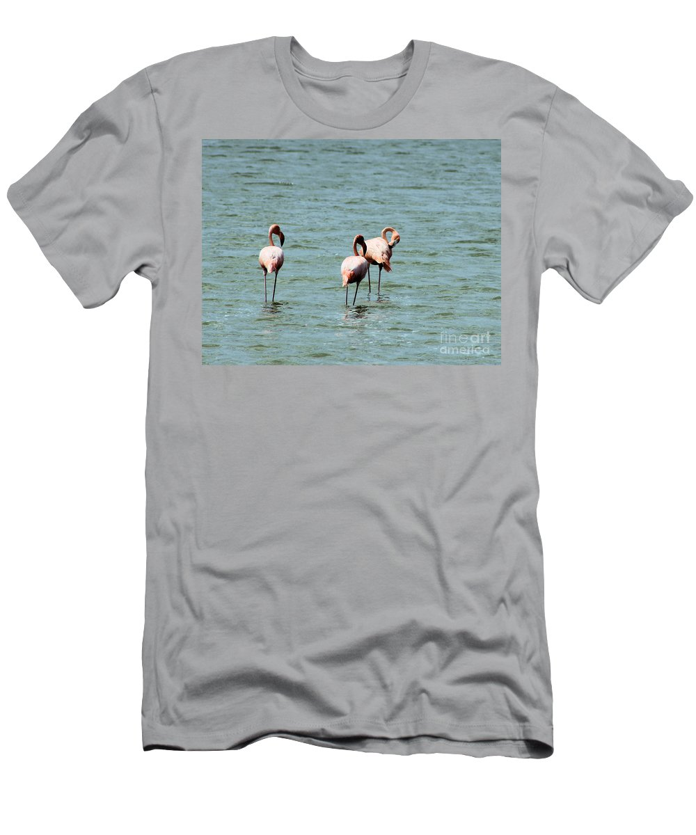 Flamingos Men's T-Shirt (Athletic Fit) featuring the photograph Flamingos Gathering Together by Christy Gendalia