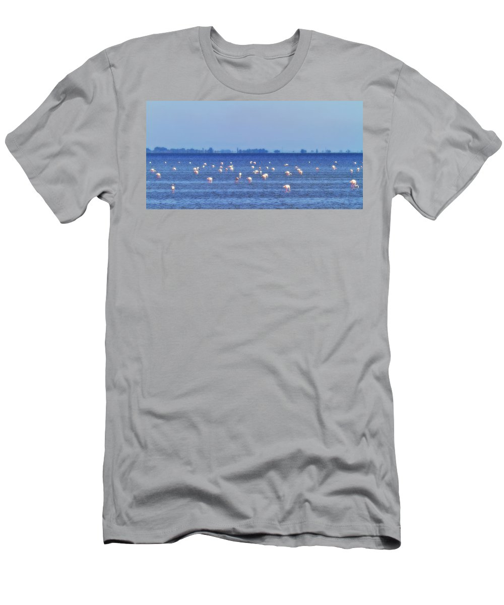 Animal Men's T-Shirt (Athletic Fit) featuring the photograph Flamingos In The Pond by Roberto Pagani