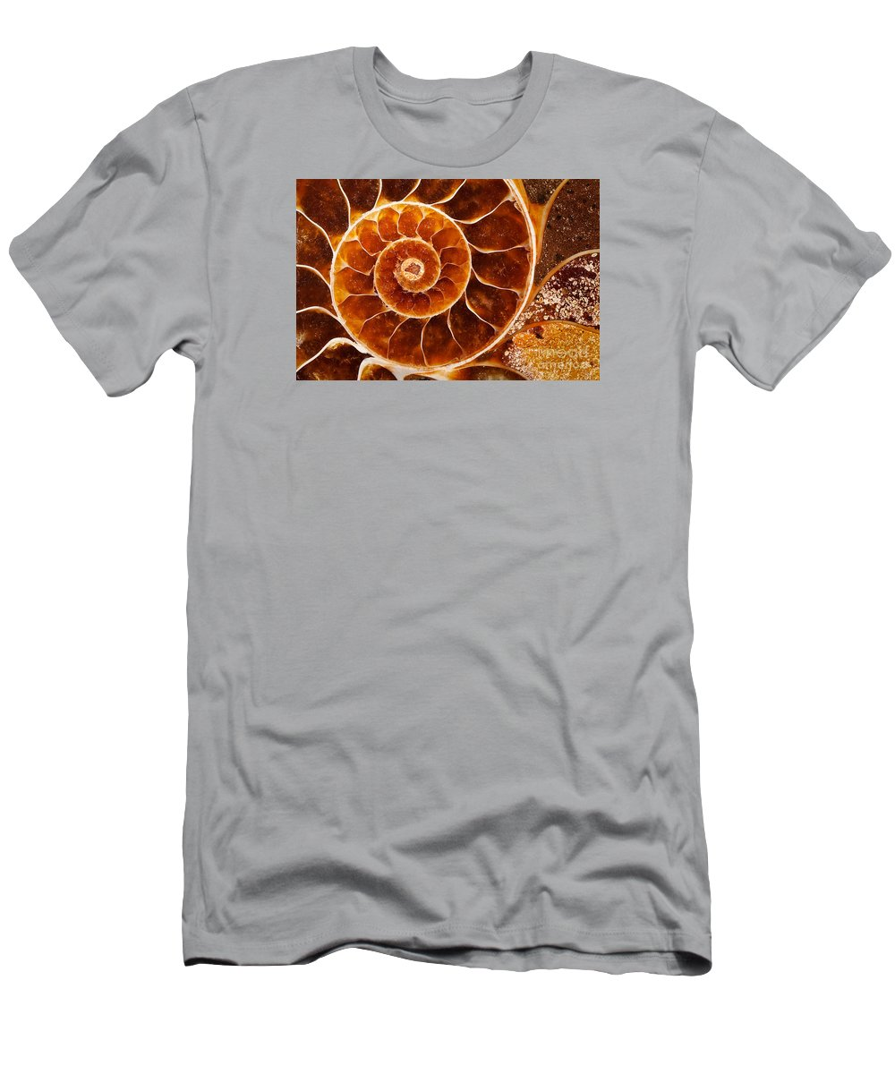 Shell Men's T-Shirt (Athletic Fit) featuring the photograph Fossil Nautilus by Alice Cahill
