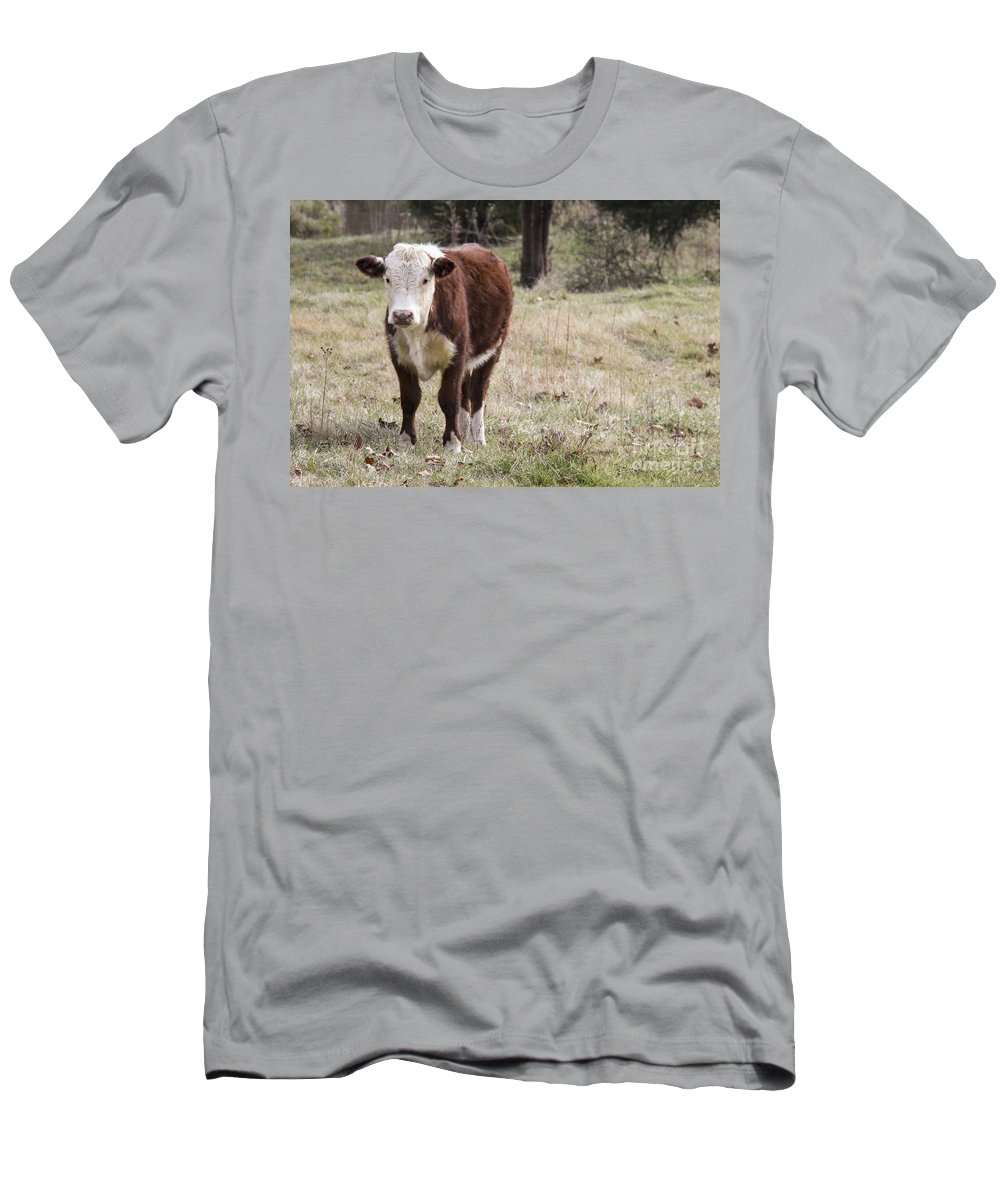 Cow Men's T-Shirt (Athletic Fit) featuring the photograph Frack by Teresa Mucha