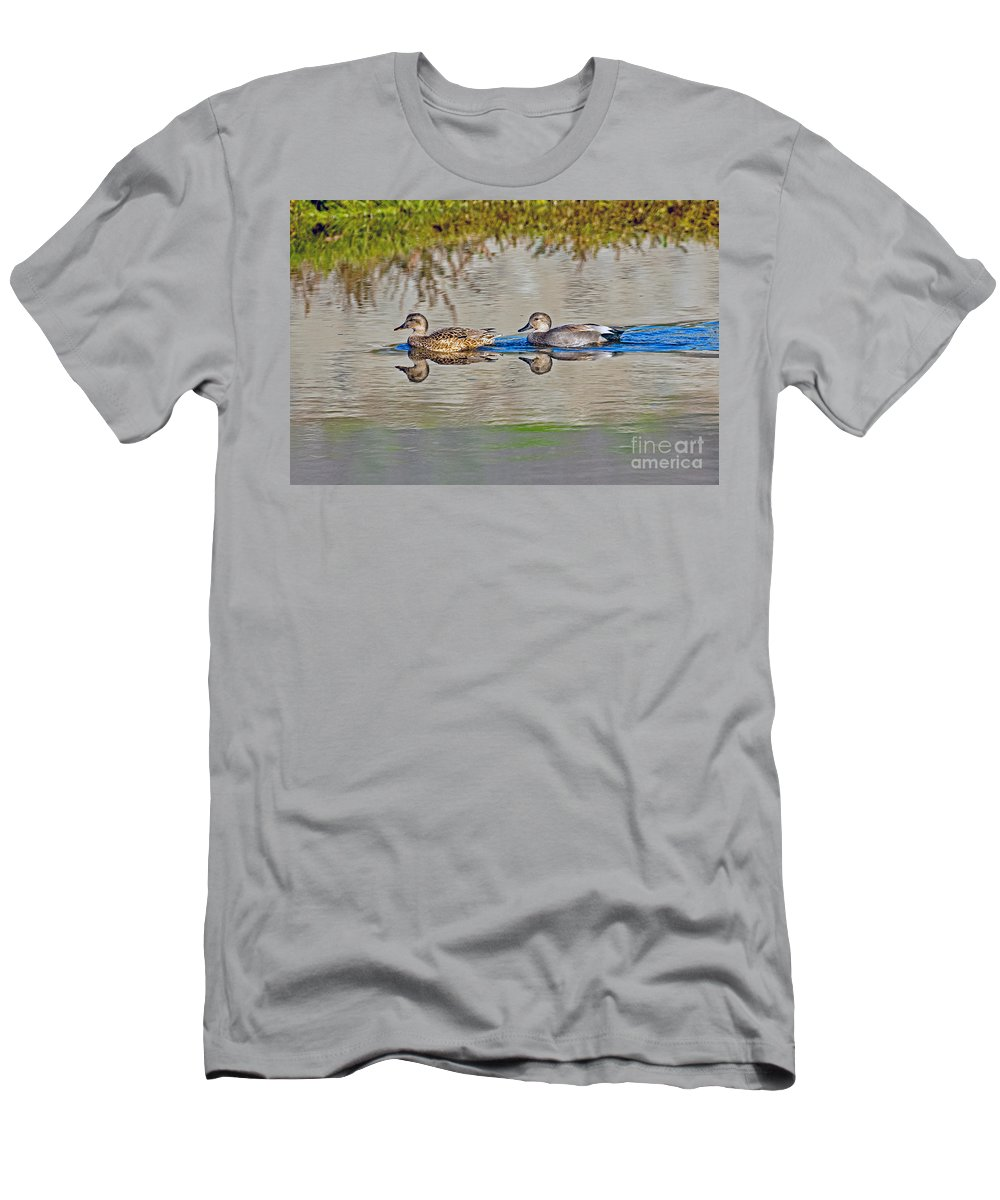 Animal Men's T-Shirt (Athletic Fit) featuring the photograph Gadwall Pair Swimming Together by Anthony Mercieca