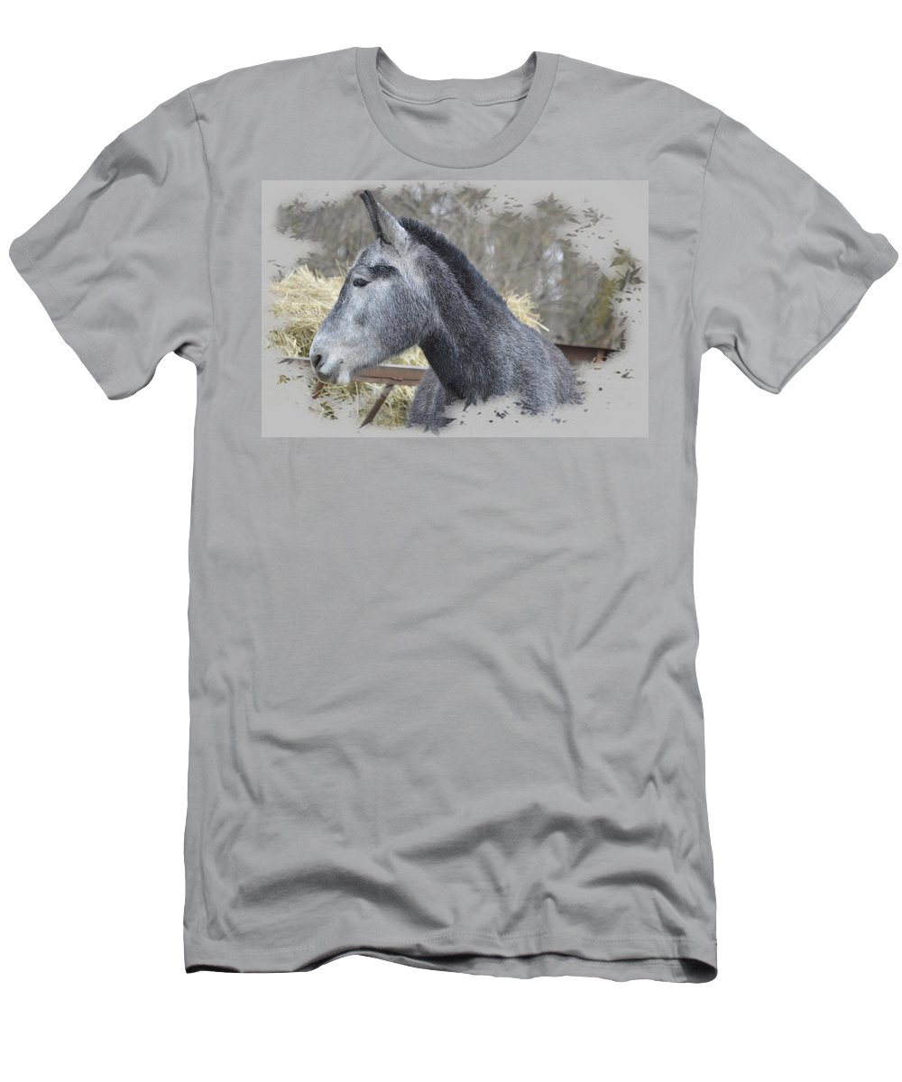 Mule Men's T-Shirt (Athletic Fit) featuring the photograph Old Gray by Bonfire Photography
