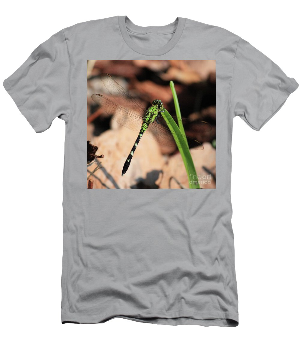 Green Dragonfly Men's T-Shirt (Athletic Fit) featuring the photograph Green Dragonfly On Grass Square by Carol Groenen