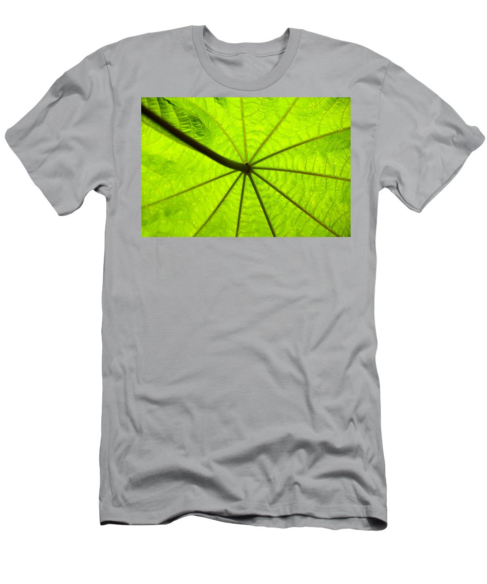 Green Men's T-Shirt (Athletic Fit) featuring the photograph Green Growth by David Lee Thompson