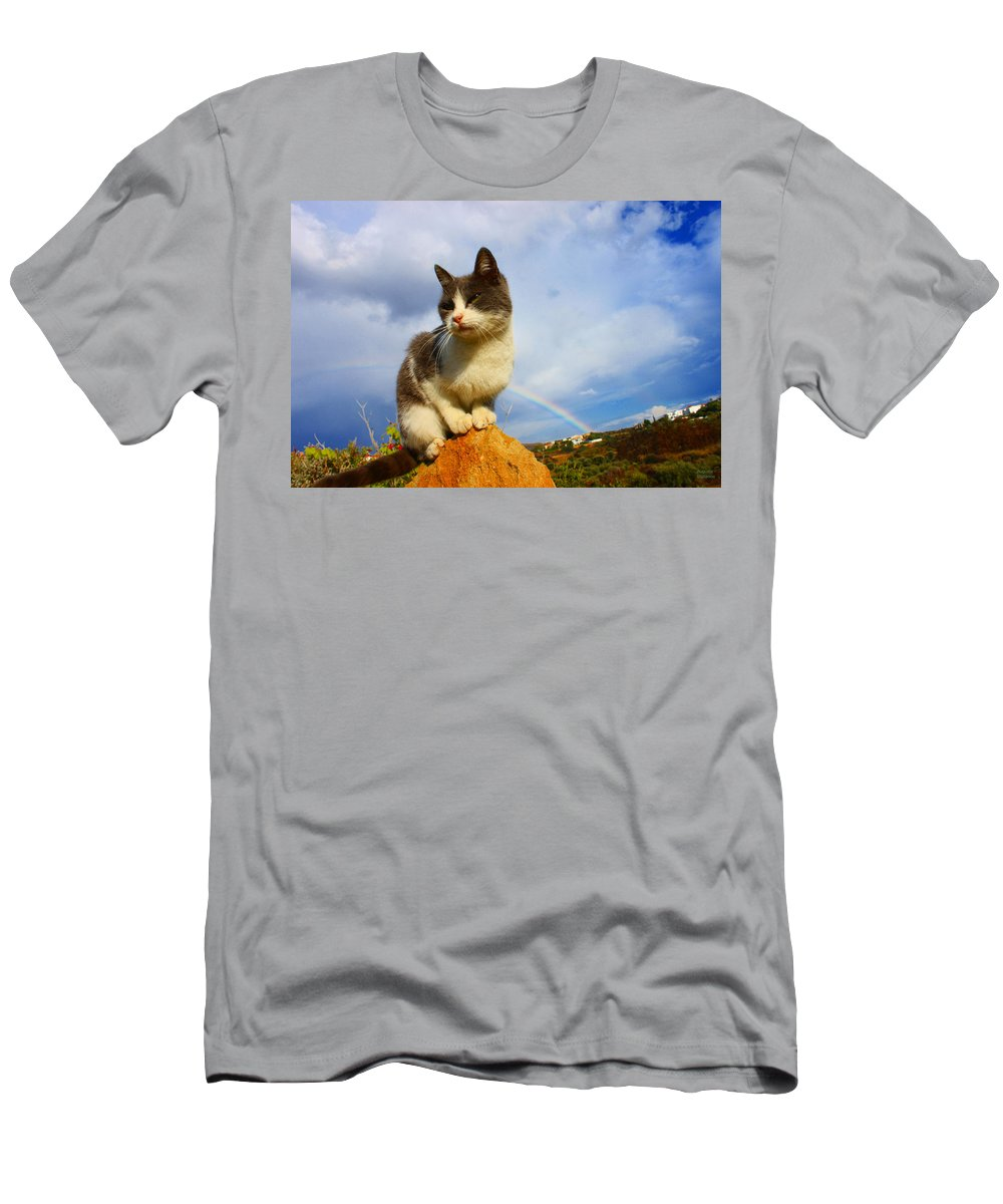 Rainbow Men's T-Shirt (Athletic Fit) featuring the photograph Grey Cat And Rainbow by Augusta Stylianou