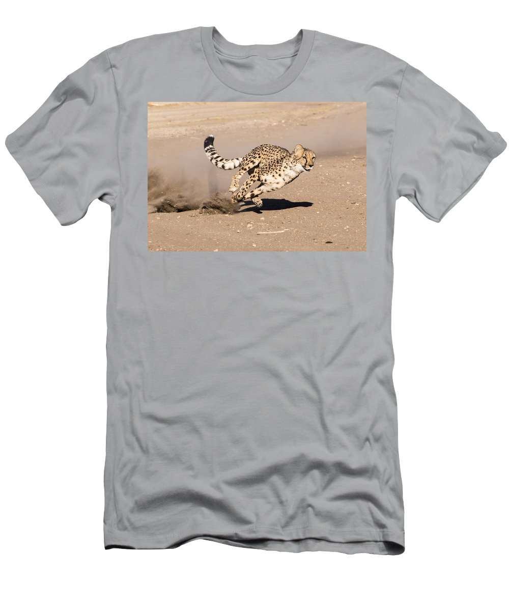 Cheetah Men's T-Shirt (Athletic Fit) featuring the photograph Guided Missile by Alex Lapidus