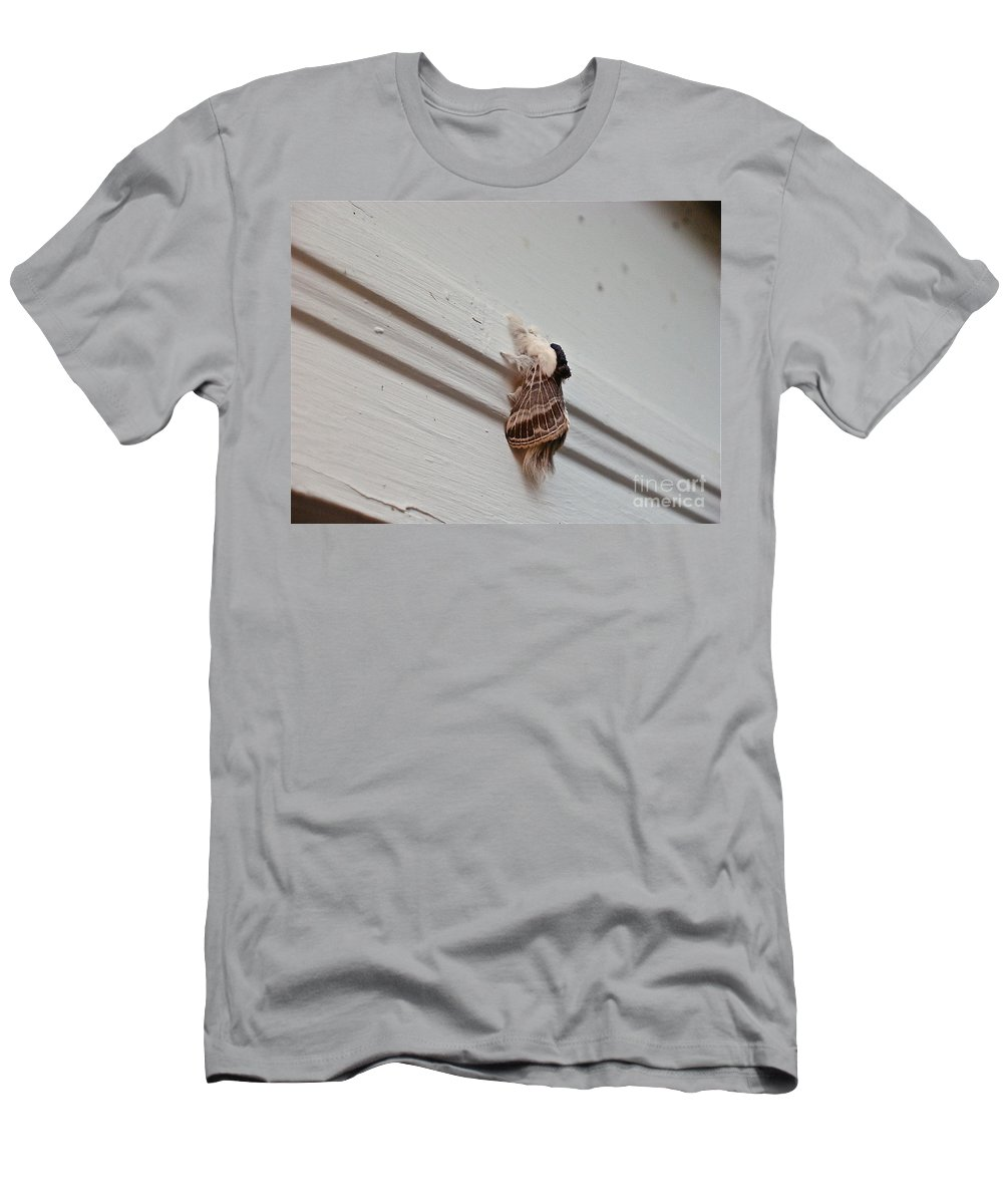 Moths Men's T-Shirt (Athletic Fit) featuring the photograph Hairy Russian Moth by Christopher Plummer