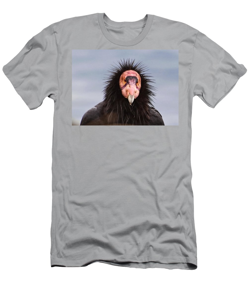 California Men's T-Shirt (Athletic Fit) featuring the photograph Handsome California Condor by Donna Doherty