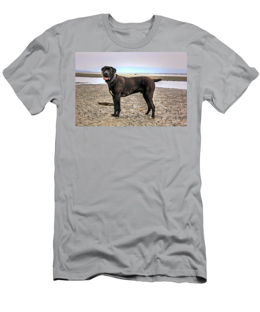 Outdoors Men's T-Shirt (Athletic Fit) featuring the photograph Happy Bandog On The Beach by Eti Reid