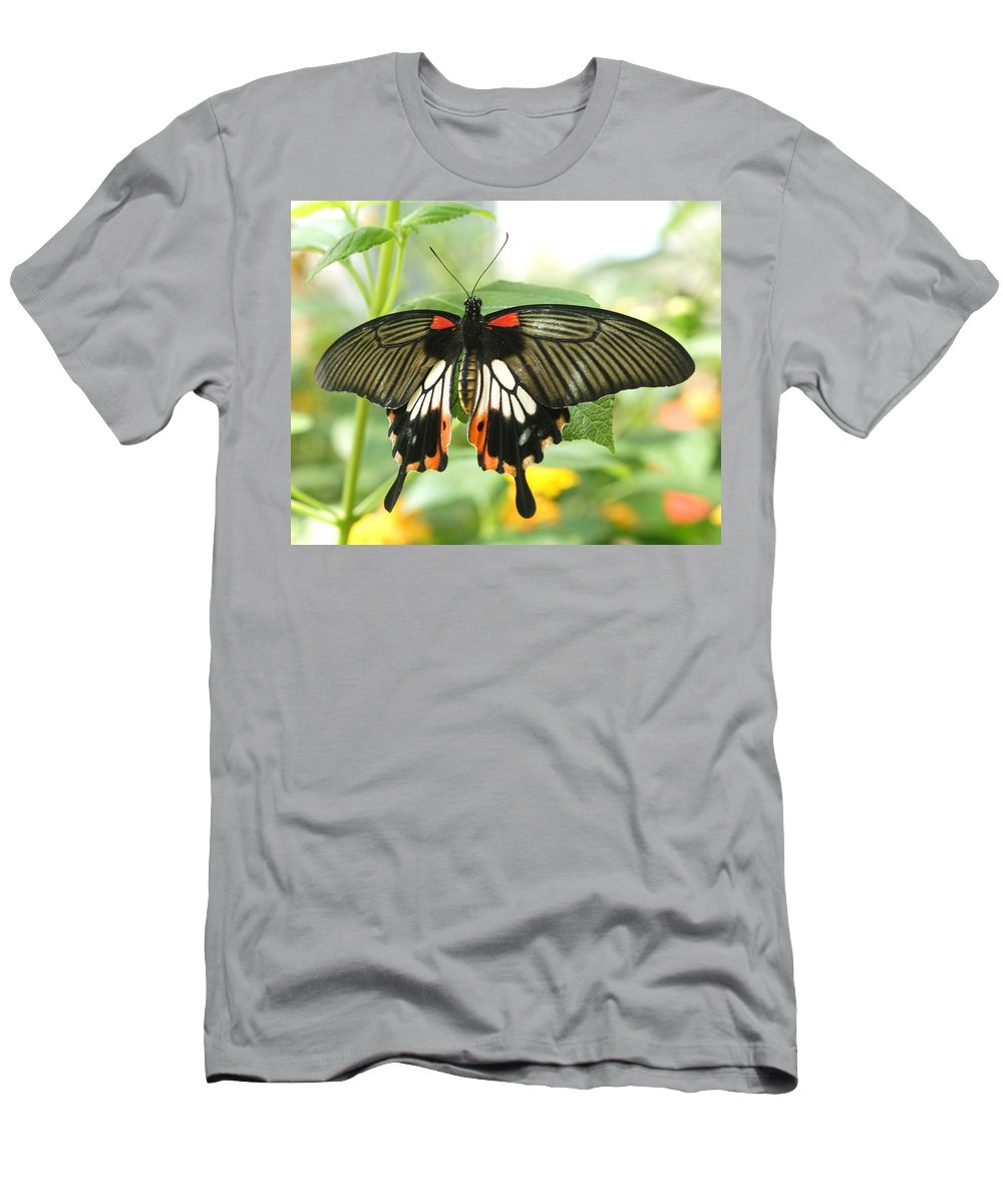 Black Men's T-Shirt (Athletic Fit) featuring the photograph Harmony by Sumi Martin