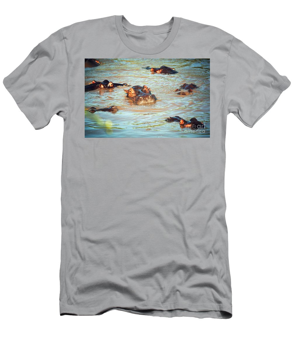 Hippo Men's T-Shirt (Athletic Fit) featuring the photograph Hippopotamus Group In River. Serengeti. Tanzania by Michal Bednarek