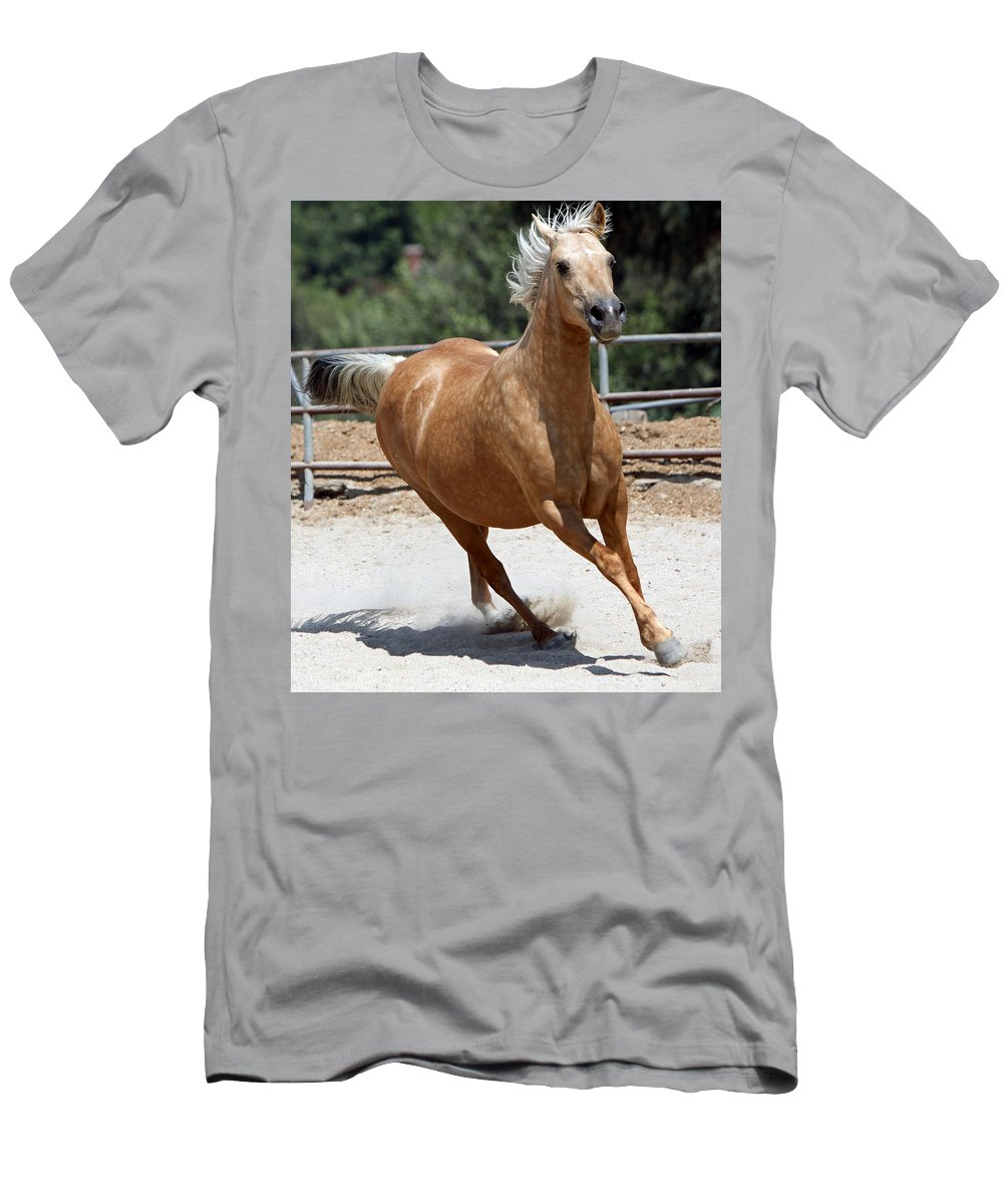 Horse Men's T-Shirt (Athletic Fit) featuring the photograph Horse On The Run by Shoal Hollingsworth