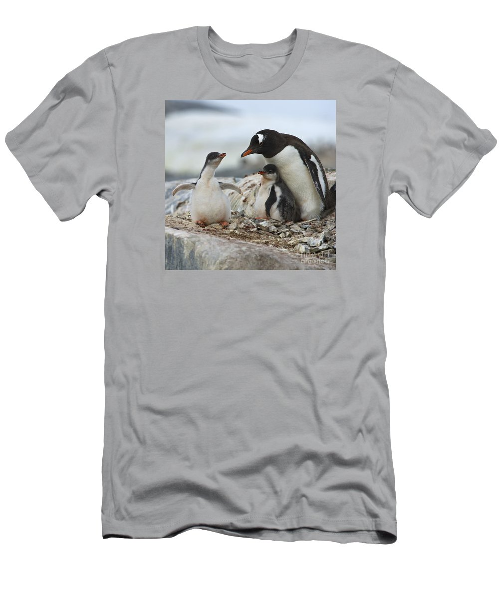 Festblues Men's T-Shirt (Athletic Fit) featuring the photograph Hug Me... by Nina Stavlund