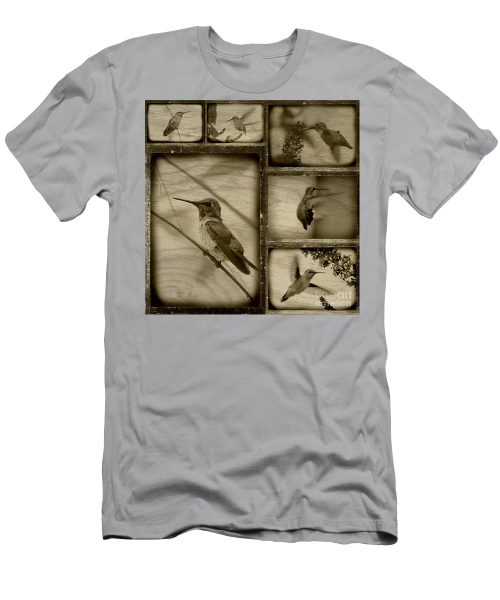 Hummingbirds Men's T-Shirt (Athletic Fit) featuring the photograph Hummingbird Family Portraits by Carol Groenen