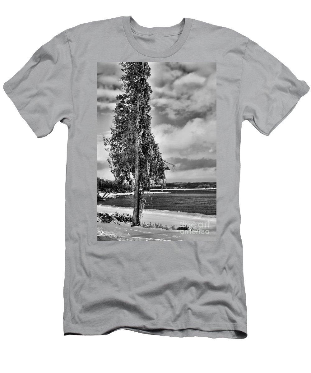 Ice Men's T-Shirt (Athletic Fit) featuring the photograph Ice Coated Tree by Louise Heusinkveld