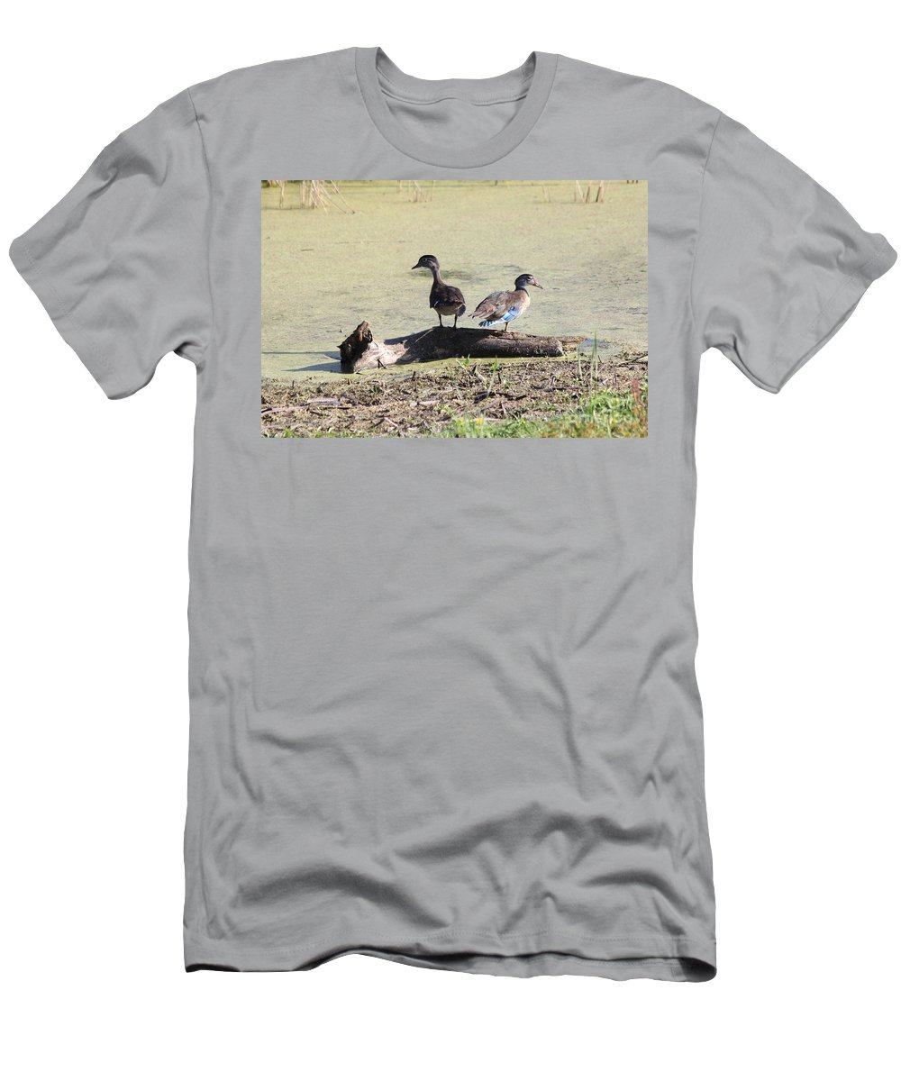 Wood Duck Men's T-Shirt (Athletic Fit) featuring the photograph Immature Wood Ducks by Lori Tordsen