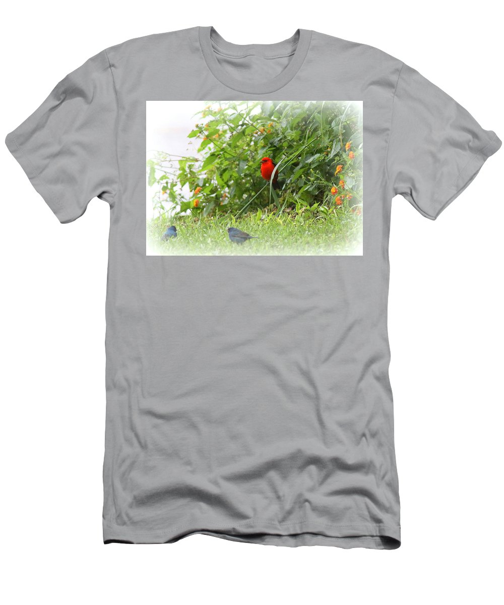 Indigo Bunting Men's T-Shirt (Athletic Fit) featuring the photograph Indigo Bunting And Scarlet Tanager 2 by Travis Truelove