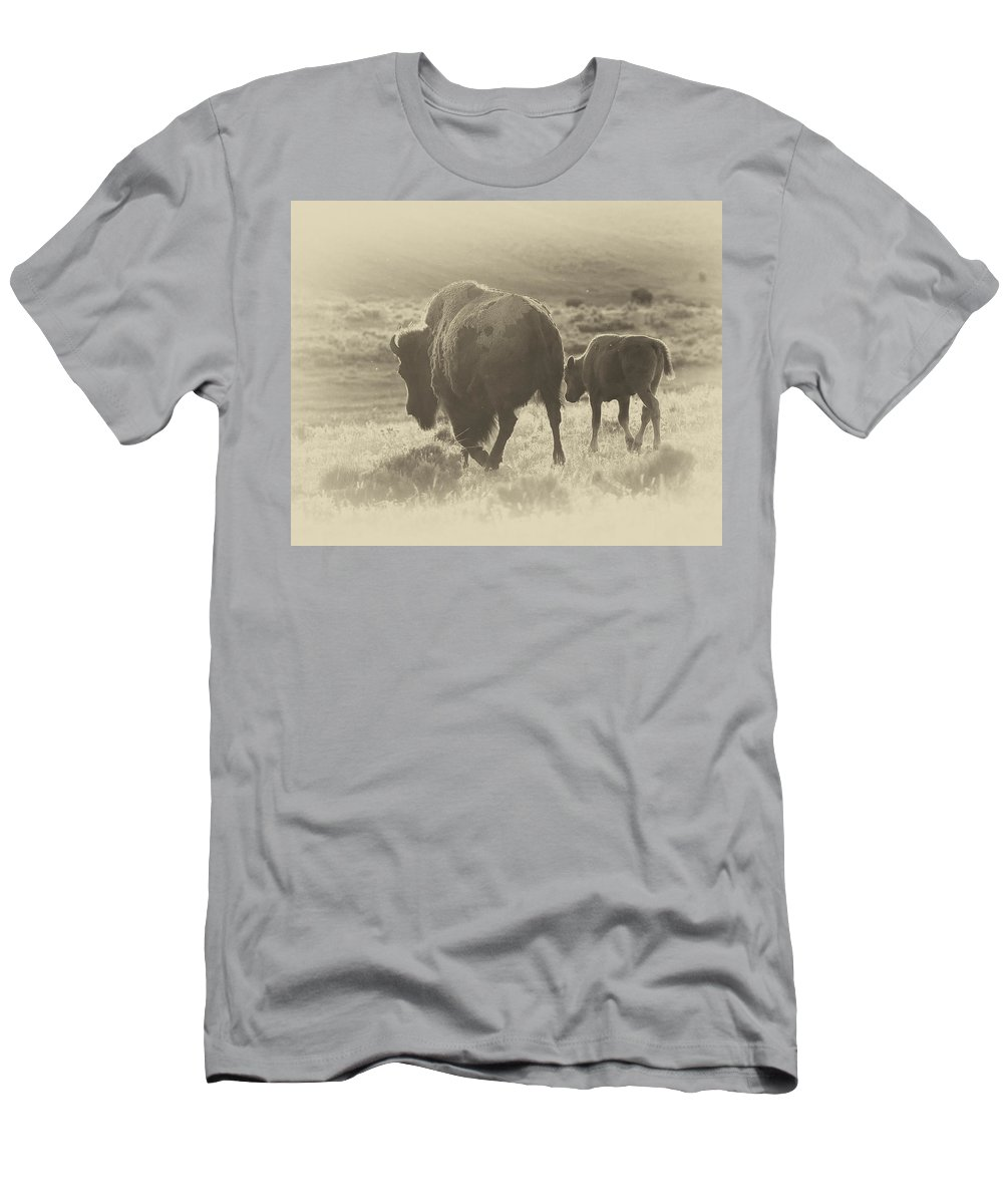 Buffalo Men's T-Shirt (Athletic Fit) featuring the photograph Into The Sunset by Elaine Haberland