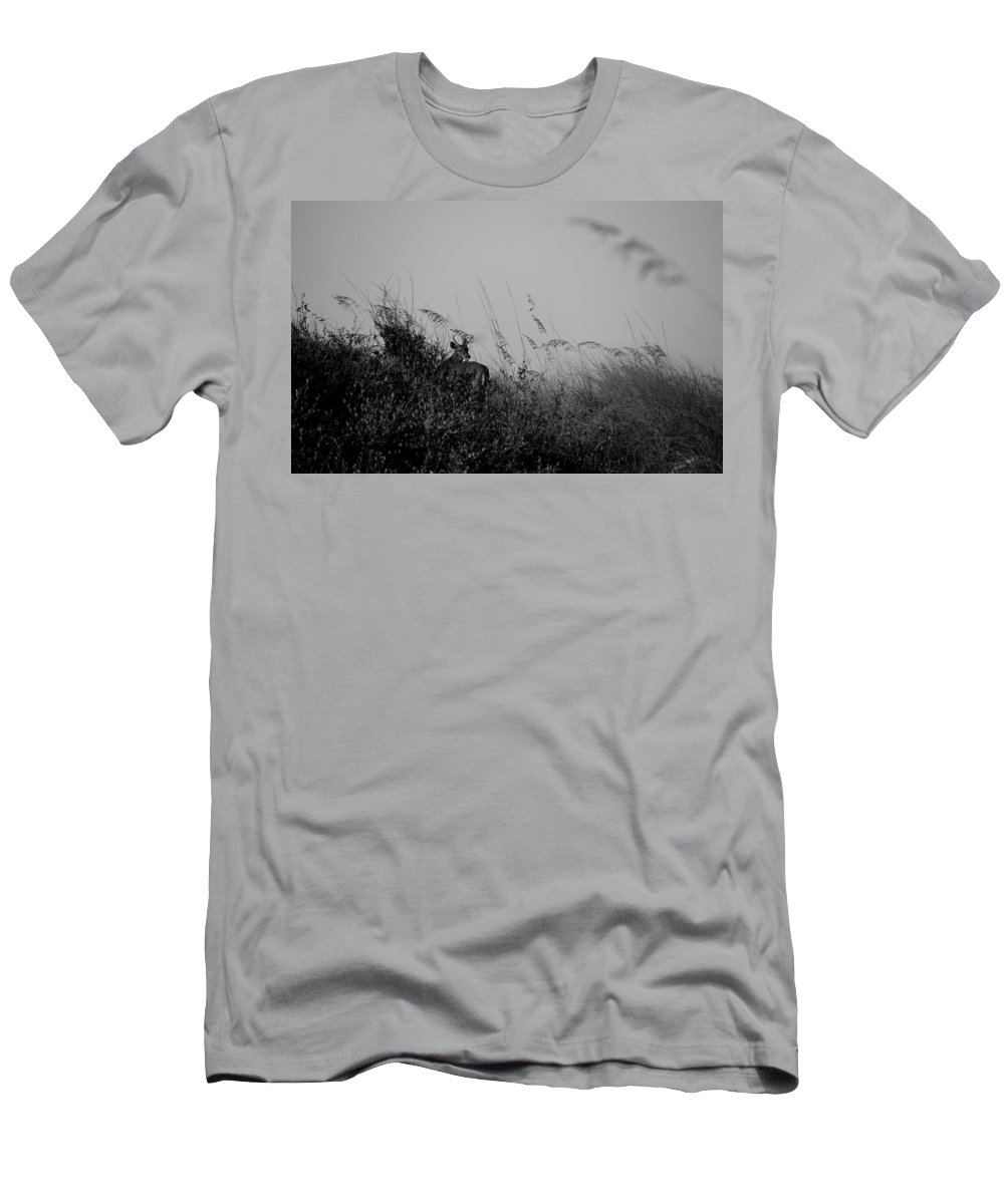 Deer Men's T-Shirt (Athletic Fit) featuring the photograph Jekyll Deer In Black by Laurie Perry