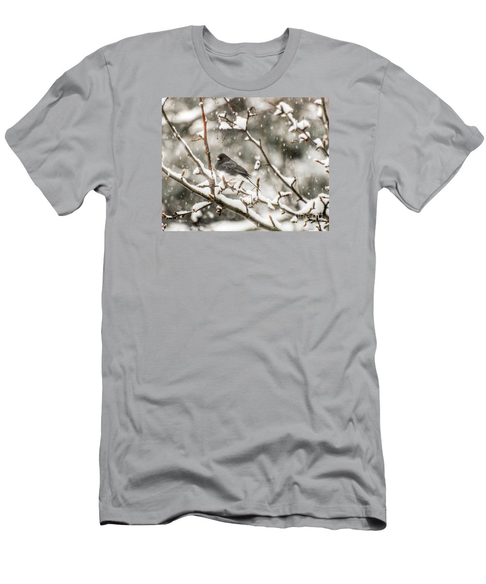 Junco Men's T-Shirt (Athletic Fit) featuring the photograph Junco In The Snow by Kerri Farley