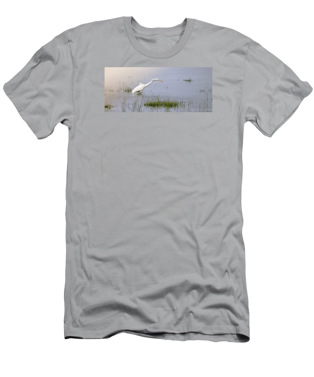 Myakka State Park Men's T-Shirt (Athletic Fit) featuring the photograph Just A Snack by Thomas Levine