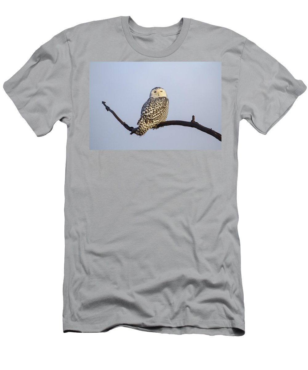 Doug Lloyd Men's T-Shirt (Athletic Fit) featuring the photograph Just Hanging Out by Doug Lloyd