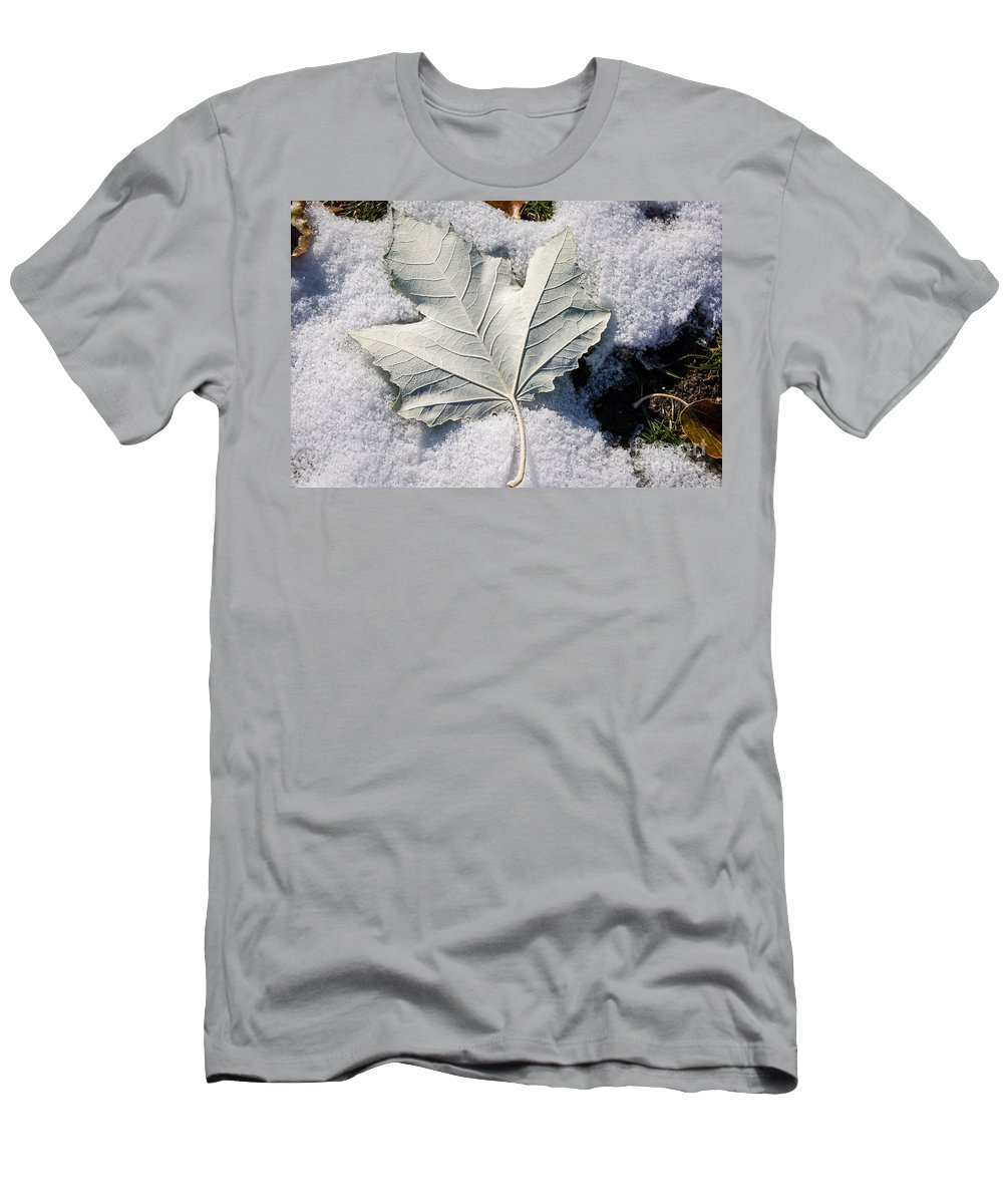Snow Men's T-Shirt (Athletic Fit) featuring the photograph Leaf In Snow by M Dale