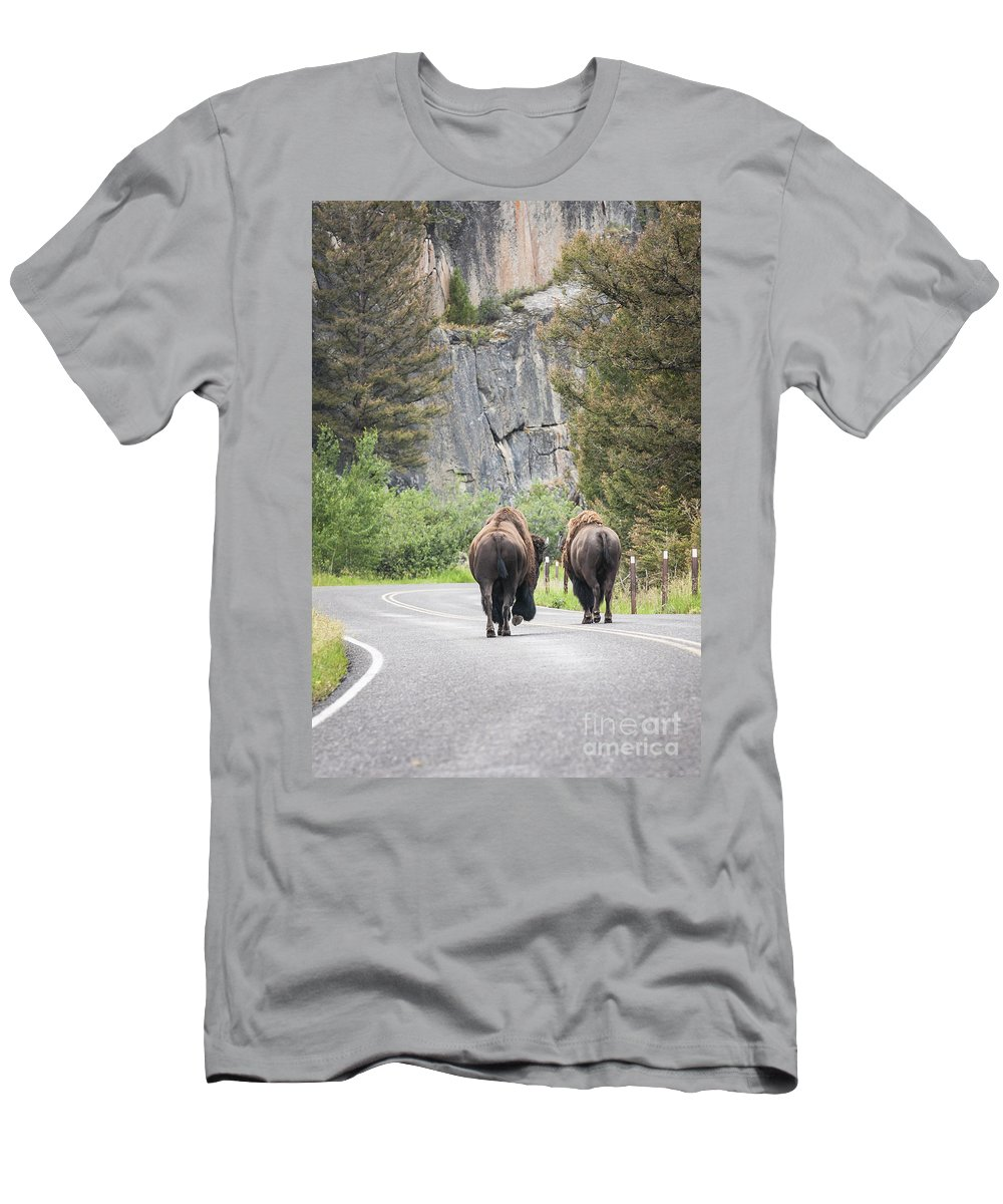 Yellowstone Men's T-Shirt (Athletic Fit) featuring the photograph Let's Start This Day... by Olivier Steiner