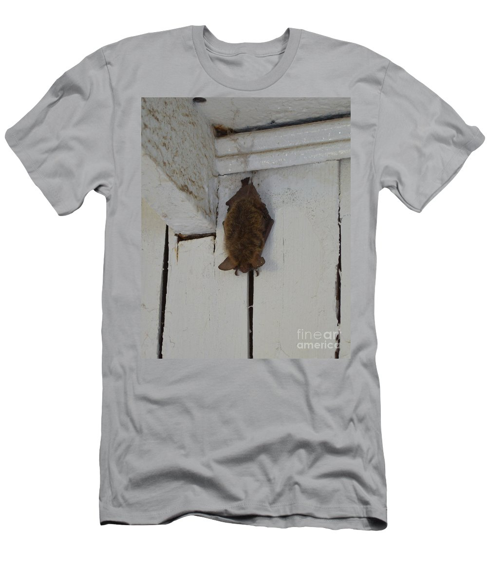 Bat Men's T-Shirt (Athletic Fit) featuring the photograph Lighthouse Bat by Meandering Photography