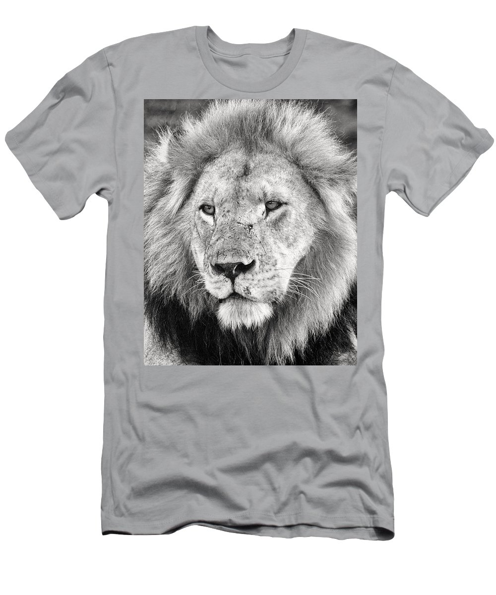 3scape Photos Men's T-Shirt (Athletic Fit) featuring the photograph Lion King by Adam Romanowicz