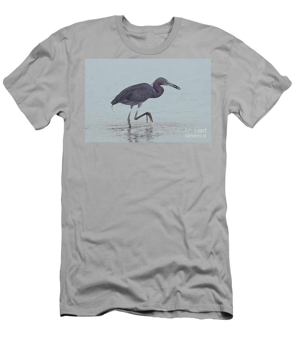 Little Blue Heron Men's T-Shirt (Athletic Fit) featuring the photograph Little Blue Heron by Anthony Mercieca