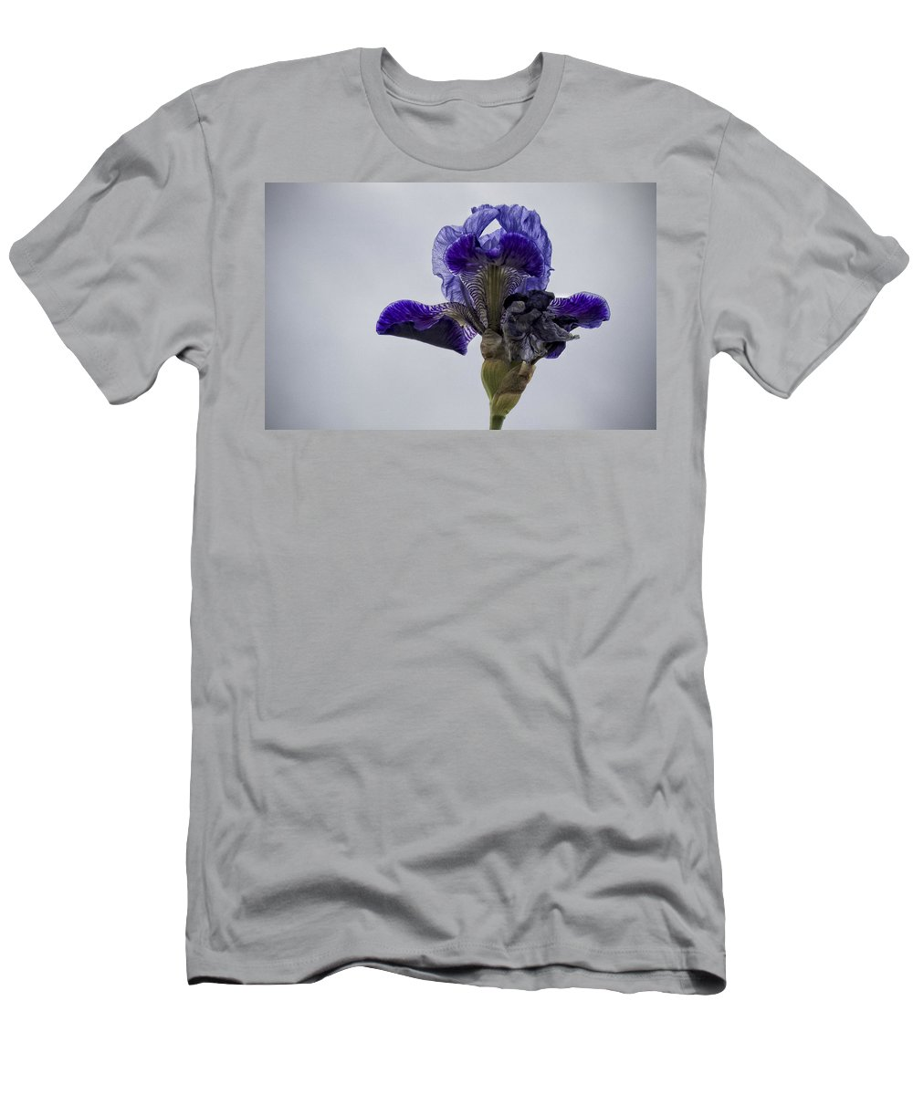 Iris Men's T-Shirt (Athletic Fit) featuring the photograph Lone Iris by Ron White