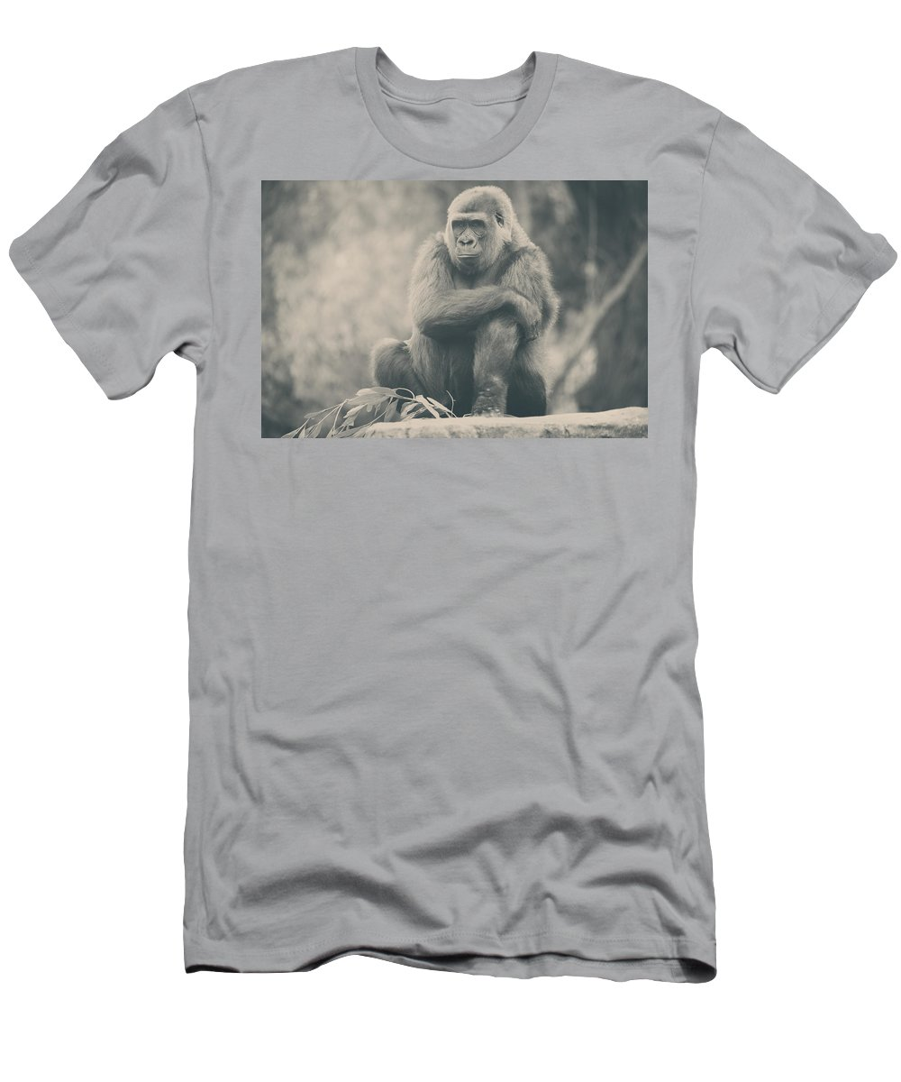 Oakland Zoo T-Shirts