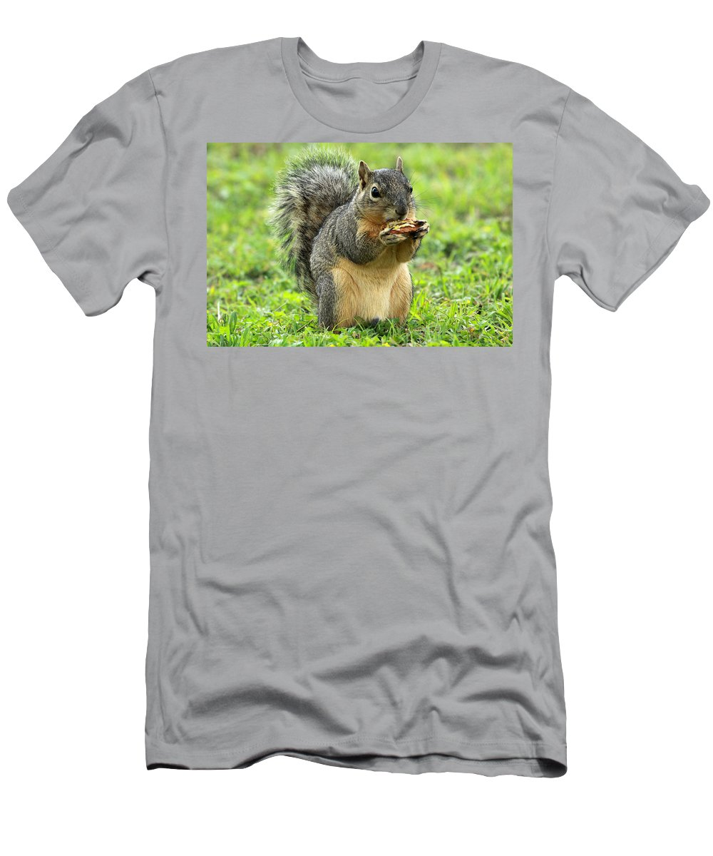 Squirrel Men's T-Shirt (Athletic Fit) featuring the photograph Lunch Time by Ronnie Prcin