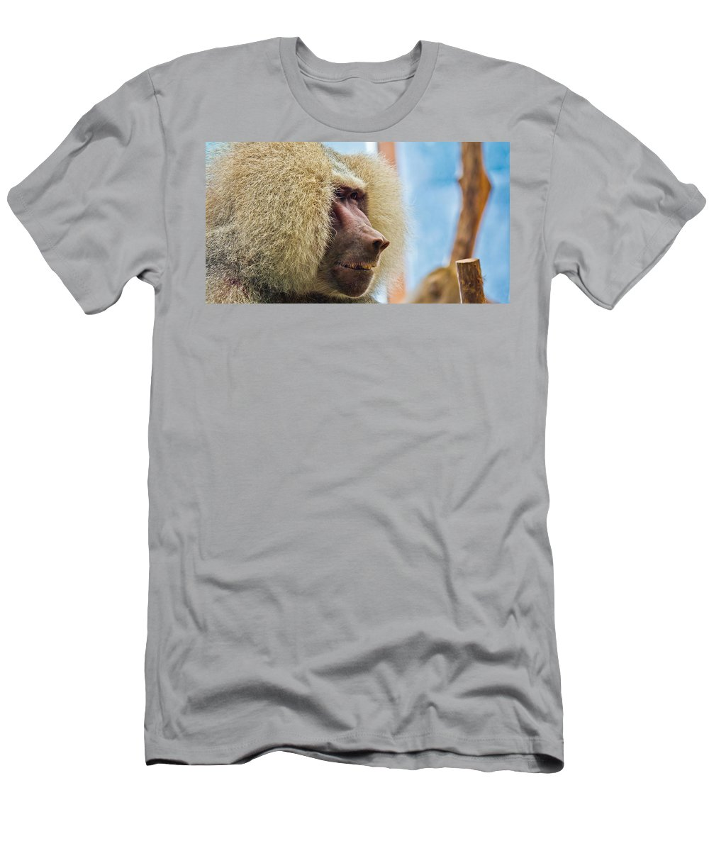 Close Men's T-Shirt (Athletic Fit) featuring the photograph Male Baboon by Jonny D
